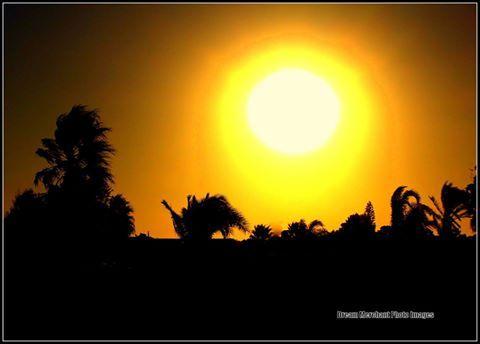 sun beats down